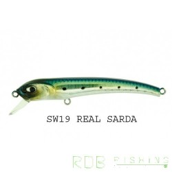 Molix Audace 65 Sinking color Real Sarda