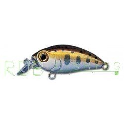 Poisson nageur SMITH Camion DR color 3