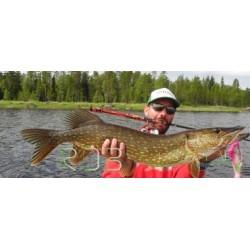 Pêche en Laponie Suédoise