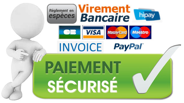 Nos solutions de paiements