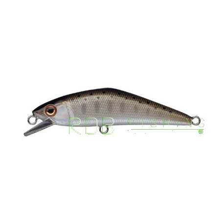 Poisson nageur SMITH D-Contact 50 col-03