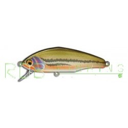 Poisson nageur SMITH D-Incite 53