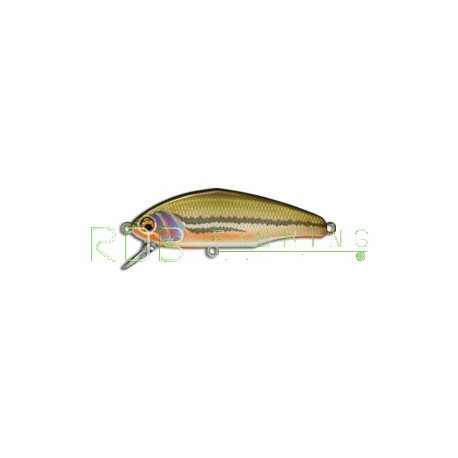 Poisson nageur SMITH D-Incite 53 col-12