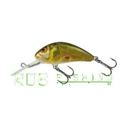 Salmo Hornet sinking 4cm 4gr color GSM (Golden Shiner Minnow)