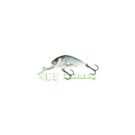 Salmo Hornet sinking 4cm 4gr color RD (Real Dace)