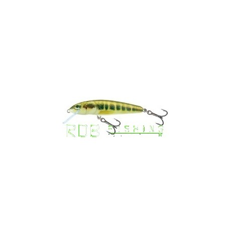 Salmo Minnow sinking 7cm 8gr color M