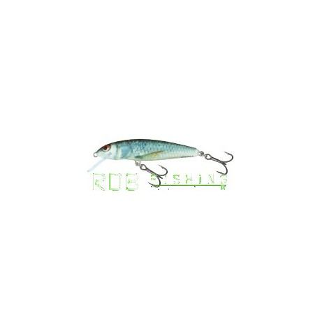 Salmo Minnow sinking 7cm 8gr color RD