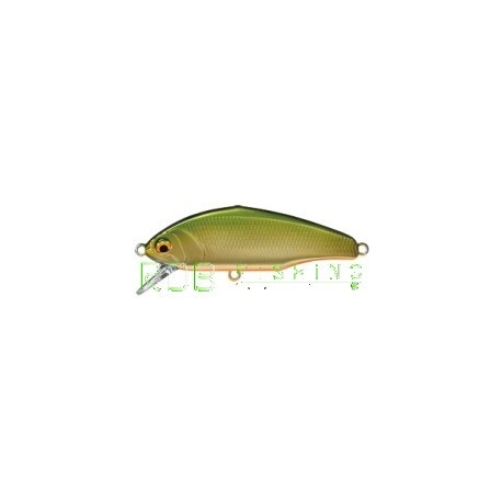 Poisson nageur SMITH D-Incite 53 col-03