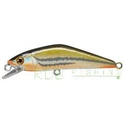Poisson nageur SMITH D-Contact 72 coloris 31