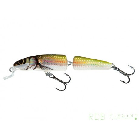 Salmo Fanatic floating - 7cm 5gr Holo Bleak