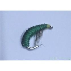 Rhyacophila Caddis Larva