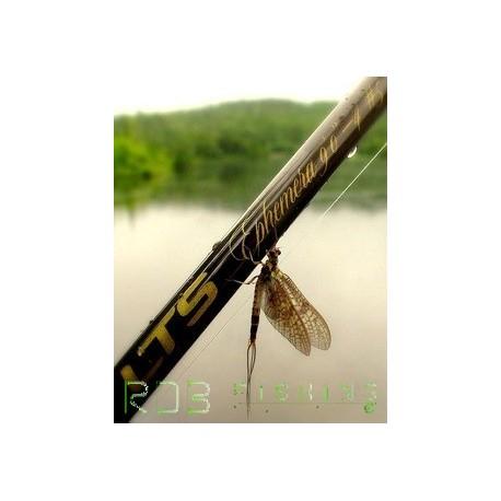 Canne à mouche LTS Ephemera 9' soie 6