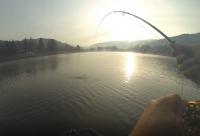 Pêche à la mouche au réservoir de la Base de Loisirs du Lac de la Moselotte
